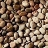 Scottish Pebbles 30-50mm Decorative Aggregate, 25KG